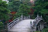 京都御所 御池庭の欅橋