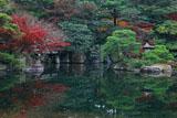 京都御所 御池庭の紅葉と石燈籠