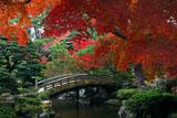 京都御所 紅葉越しの御内庭