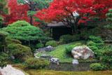 京都御所 御内庭の紅葉と泉殿