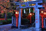 京都 紅葉の辰己大明神
