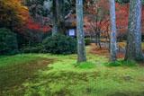 三千院 紅葉の阿弥陀堂