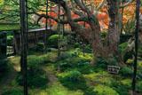 大原寺宝泉院 紅葉の盤桓園