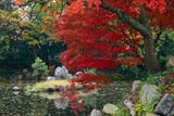 渉成園 南大島の紅葉と鷺