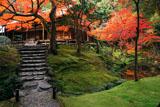 苔寺 紅葉の観音堂と金剛池