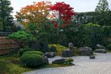 大徳寺興臨院 方丈前庭の紅葉