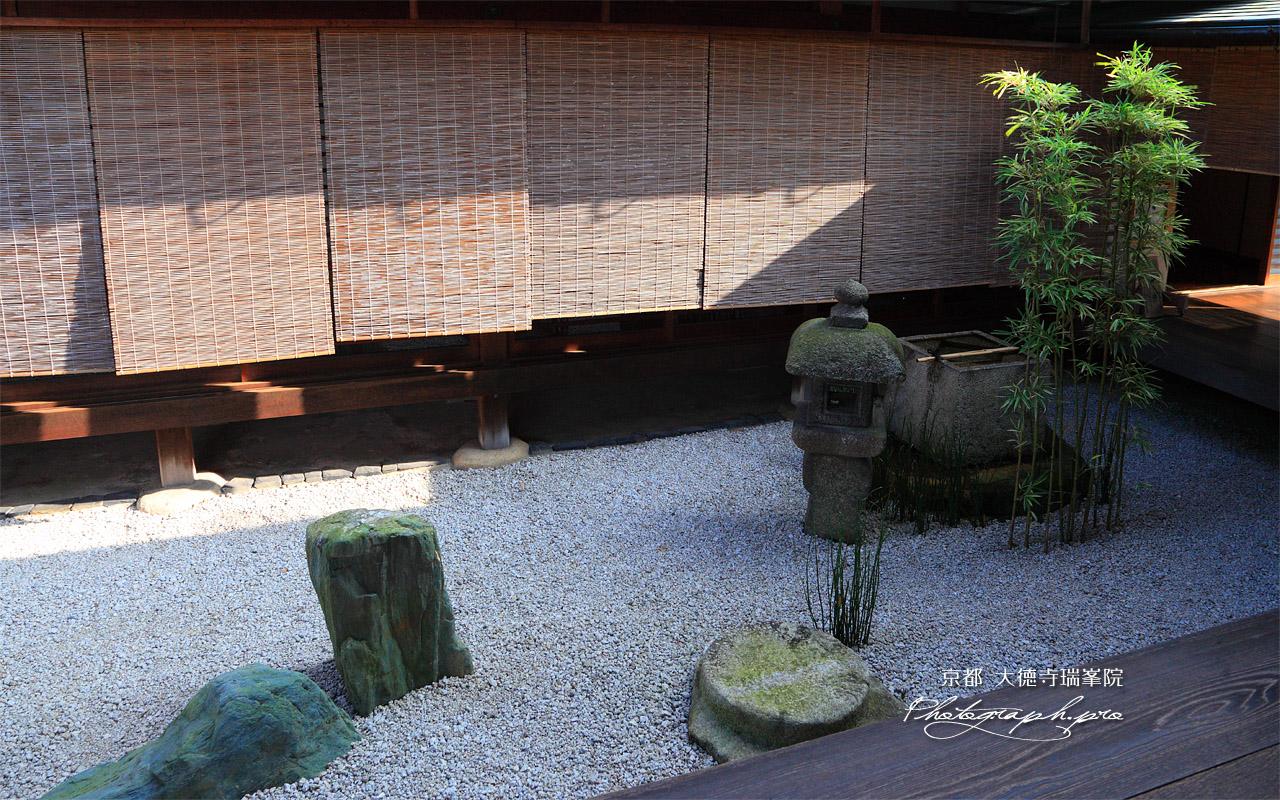 大徳寺瑞峯院 中庭露地 坪庭 壁紙