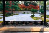 廬山寺 源氏庭の紅葉