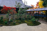 立本寺 南庭と本堂