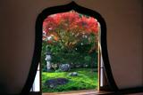 天得院 火灯窓越しの紅葉