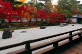 相国寺 夕陽と紅葉の開山堂南庭