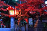 三宅八幡宮 灯籠と紅葉