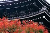 京都六角堂 紅葉と本堂