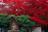 宝鏡寺 人形塚と紅葉