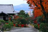 建勲神社 紅葉と貴賓館