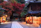 今宮神社 あぶり餅屋と紅葉の東門