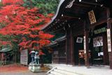 大石神社 拝殿と紅葉
