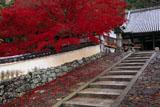 宝積寺 石段と紅葉