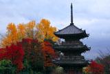 宝積寺 三重塔と紅葉
