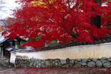 宝積寺 築地塀と紅葉
