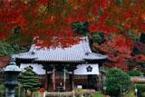 山崎聖天 紅葉と本堂