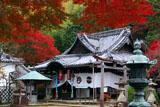 山崎聖天 紅葉と聖天堂