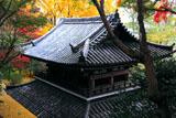 山崎聖天 紅葉の仁王門