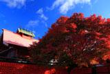 車折神社 芸能神社と紅葉