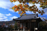 京都遍照寺 本堂