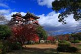 伏見桃山城 紅葉と天守閣