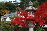京都乃木神社 紅葉と資料館