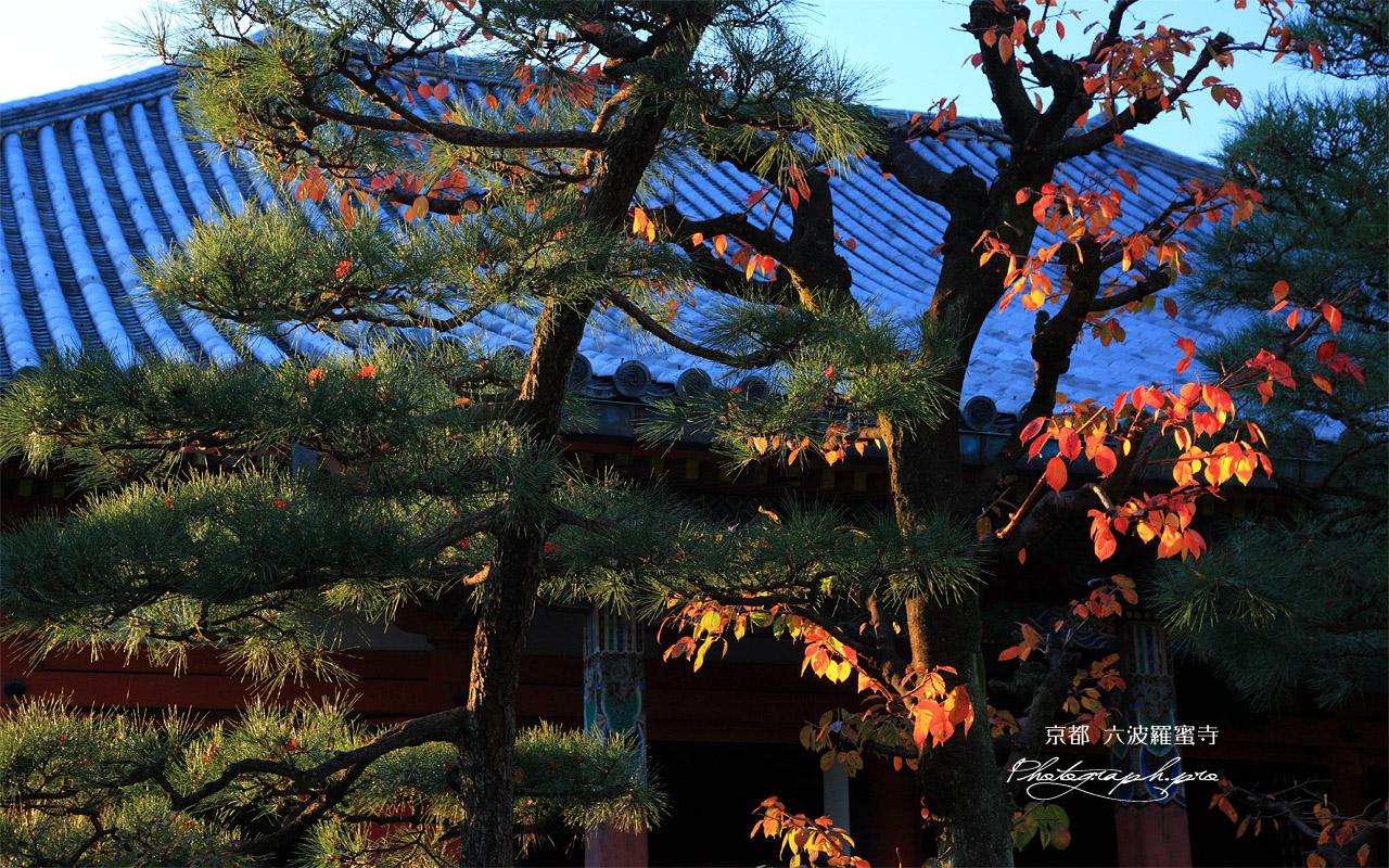 六波羅蜜寺 桜紅葉 壁紙