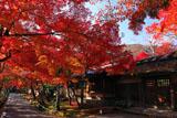 宝厳院 紅葉と書院門