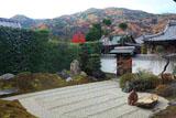 弘源寺 虎嘯の庭と紅葉の嵐山