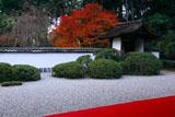 京都正伝寺 紅葉の庭園