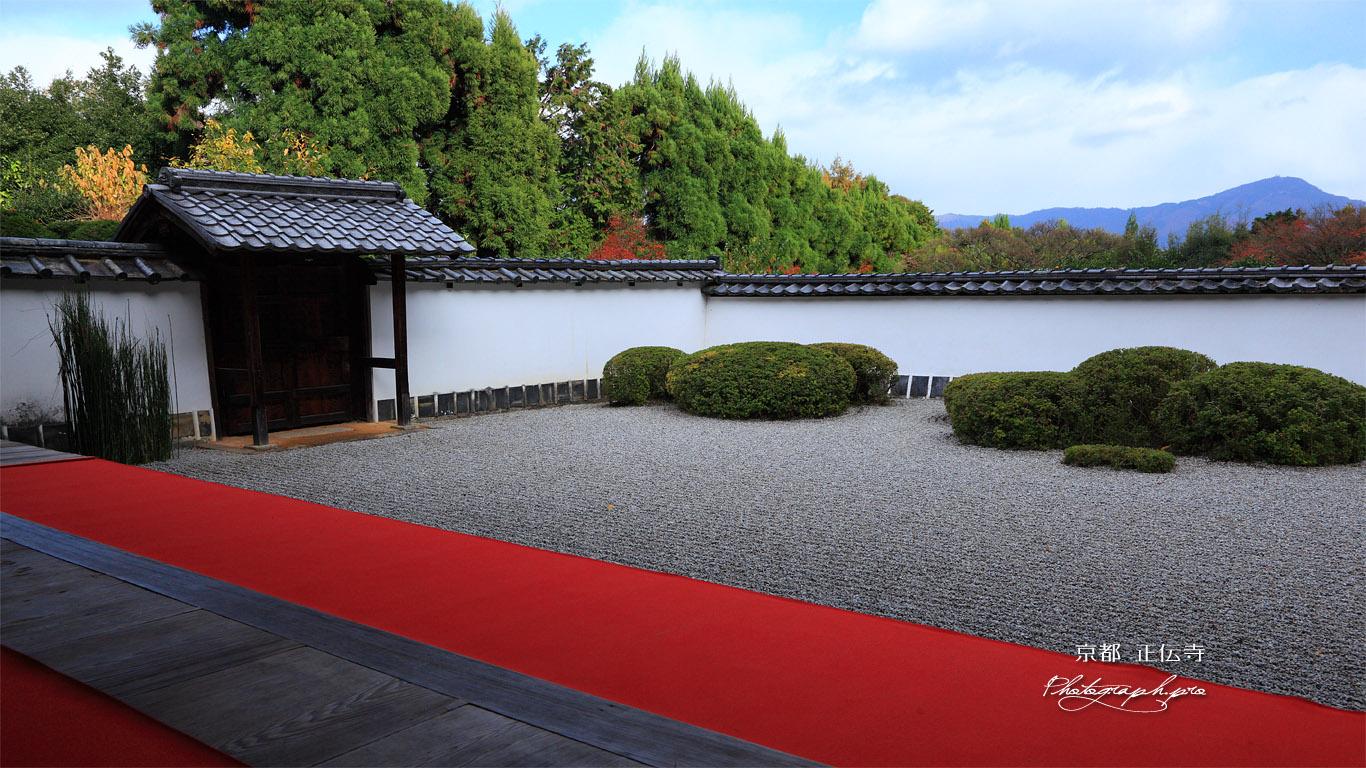 正伝寺庭園と比叡山 壁紙