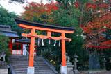 宇治神社 紅葉の境内