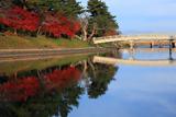 宇治 紅葉と橘橋