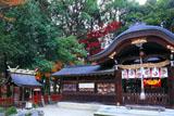 京都鷺森神社 拝殿と紅葉