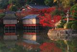 長岡天満宮 八条ケ池と紅葉の錦水亭