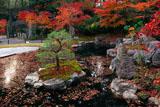 長岡天満宮 錦景苑の紅葉