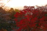 京都霊山護国神社 紅葉と霊山歴史館
