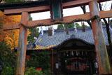 許波多神社 イチョウ黄葉と社殿