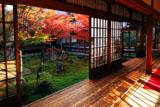 建仁寺 大書院から紅葉の潮音庭