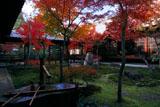 建仁寺 手水鉢と紅葉の潮音庭