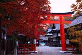 下鴨神社 紅葉と本宮