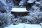 志明院 雪化粧の仁王門