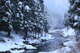 京都花脊 雪景色の上桂川