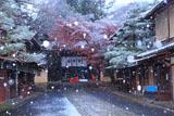 今宮神社 雪の東参道