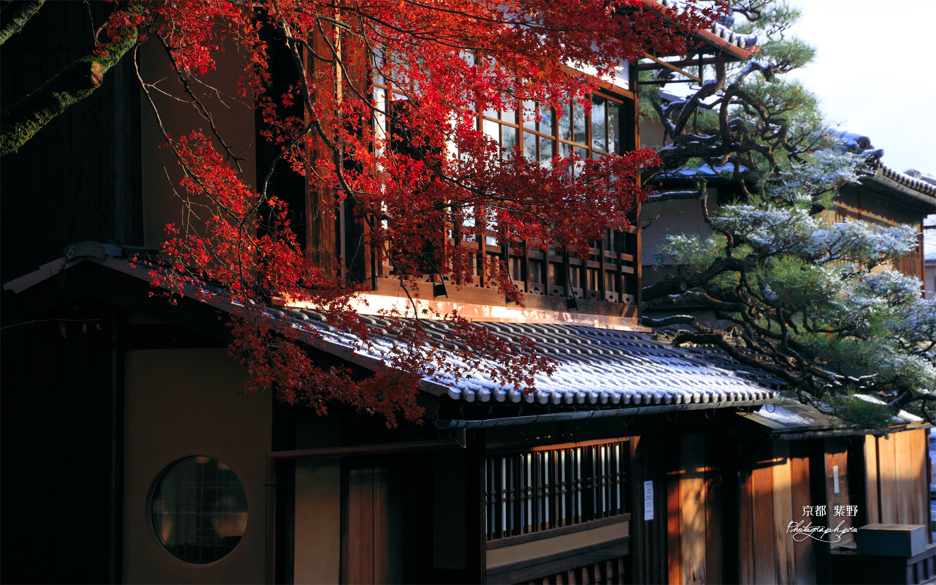 今宮神社 名残の紅葉と一和